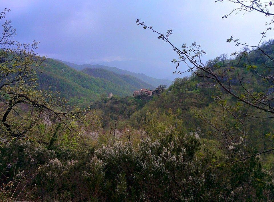I boschi e la valle